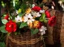 Cesto de flores no cantinho da Leitura